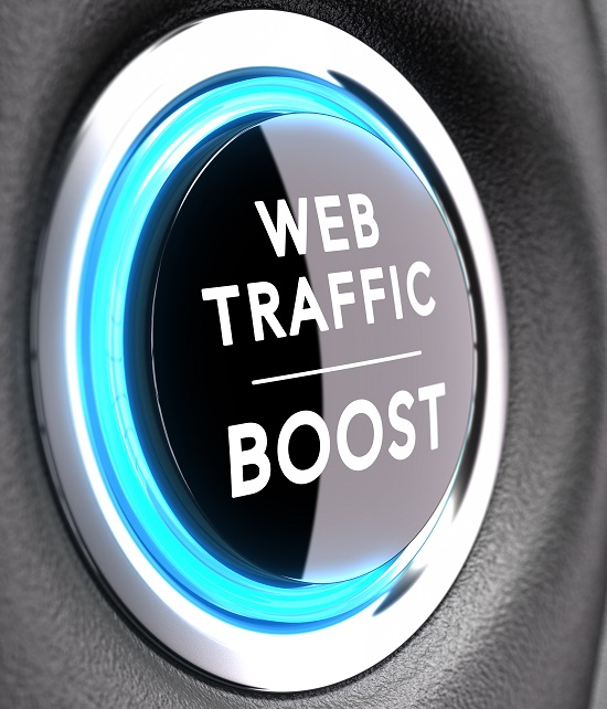 SEO Web Traffic Boost button